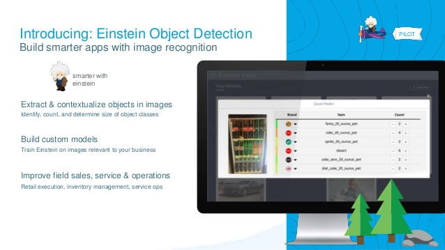 Einstein Object Detection: A QuickOverview